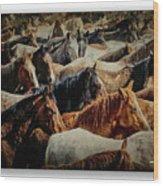 Horses 29 Wood Print