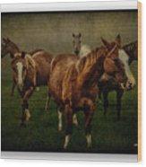 Horses 31 Wood Print