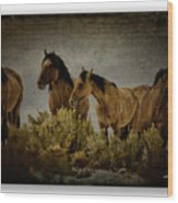 Horses 34 Wood Print