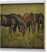 Horses 37 Wood Print