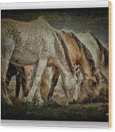 Horses 39 Wood Print