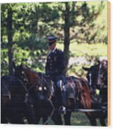 Horses At Arlington Cemetery Wood Print