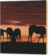 Horses At Sunset Wood Print