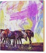 Horses Flock Pasture Animal  Wood Print