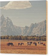 Horses Grazing In Front Of The Teton's Wood Print