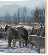 Horses In Front Of Quaggy Jo Wood Print