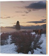 Horses In Snow At Sunset Wood Print