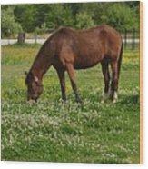 Horses In The Meadow 2 Wood Print