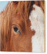 Horse's Mane Wood Print