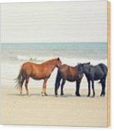 Horses On Beach Wood Print