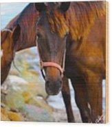 Horses On Jost  Wood Print