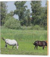 Horses On Pasture Nature Farm Scene Wood Print