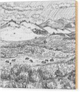 Horses On Summer Range Field Sketch Wood Print