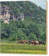 Horses On The Rubideaux Wood Print
