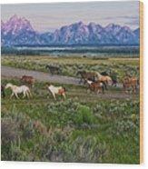 Horses Walk Wood Print by Jeff R Clow