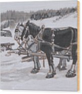 Horses Wearing Snowshoes Historical Vignette Wood Print