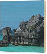 Horseshoe Bay Wood Print