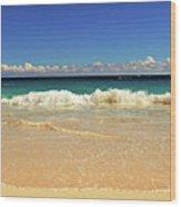 Horseshoe Beach Wood Print