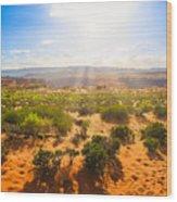 Horseshoe Bend Desert Wood Print