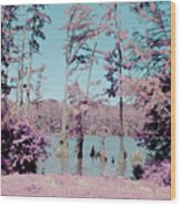 Horseshoe Conservation Area Infrared Wood Print