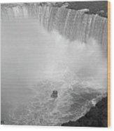 Horseshoe Falls Black And White Wood Print