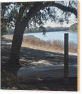 Horseshoe Lake At Orange Springs Florida Wood Print