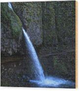 Horsetail Falls 1 Wood Print