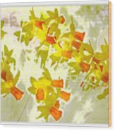 A Host Of Golden Daffodils Wood Print