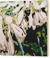 Hosta Blooms Wood Print