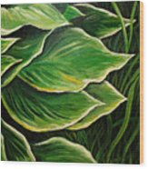 Hostas And Grass Painting Wood Print