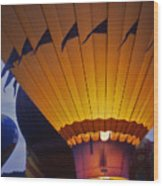 Hot Air Balloon - 10 Wood Print by Randy Muir