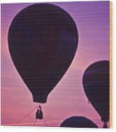 Hot Air Balloon - 8 Wood Print by Randy Muir