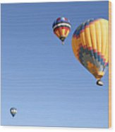 Hot Air Balloon Ride A Special Adventure Wood Print