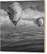 Hot Air Balloons In Black And White Over Fields Wood Print
