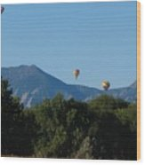 hot air balloons SCN M 23 Wood Print