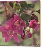 Hot Pink Blossoms Wood Print