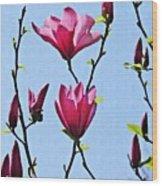 Hot Pink Magnolias Wood Print
