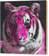 Hot Pink Tiger Wood Print