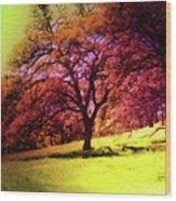 Hot Summer  Wood Print by Monroe Snook
