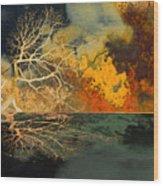 Hotzone Wood Print
