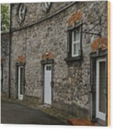 House And Street In Kilkenny Wood Print