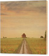 House At The End Of A Track In A Poppy Field Wood Print