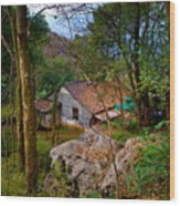 House In China Woods Wood Print