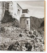 House In Ruins Wood Print