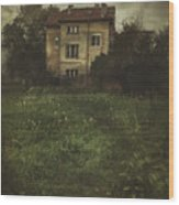 House In Storm Wood Print