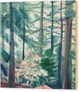 House In The Redwoods Wood Print