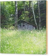 House In The Wood Wood Print