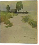 House On The Beach In Florida Wood Print