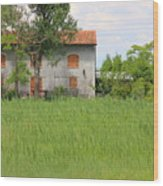 House On Torcello In Venice Wood Print
