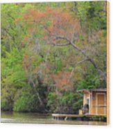 Houseboat On The Apalachicola River Wood Print